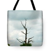 Tennessee Lone Tree Tote Bag