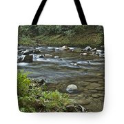 Tennessee Stream 6049 Tote Bag