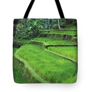 Terraced Fields Of Rice Tote Bag