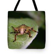 Terrestrial Turtle Bug Tote Bag by Ted Kinsman