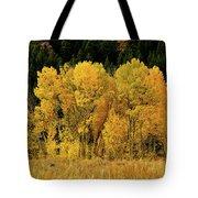 Teton Autumn Foliage Tote Bag