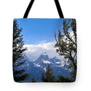 Teton Through The Trees Tote Bag