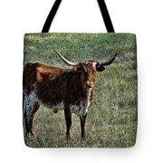Texa Longhorn Tote Bag