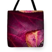 Textured Layers Tote Bag