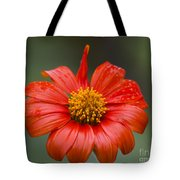 Thai Flower In Glorious Orange #2 Tote Bag