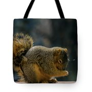 Thank You For The Nuts Tote Bag