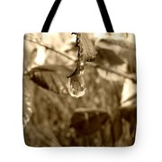 Thawing Sepia Leaves Tote Bag