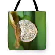 Thd Daylily Was Here Tote Bag