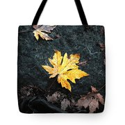 The Autumn Leaf Tote Bag