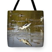 The Avocets  Tote Bag