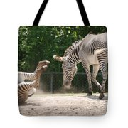 The Back End Tote Bag