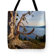 The Banks Of Crater Lake Tote Bag