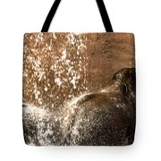 The Bath Day Tote Bag