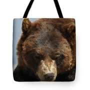 The Bear 2 Tote Bag