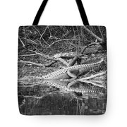 The Beast That Lives Under The Bridge Tote Bag
