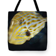 The Beautiful Iridescent Stripes Tote Bag