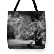 The Bench In The Park Tote Bag