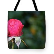 The Big Rain Drop Tote Bag