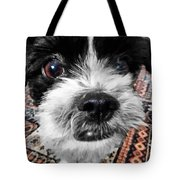 The Black And White Dog Tote Bag