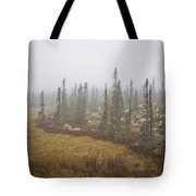 The Boreal Forest On A Foggy Day Tote Bag