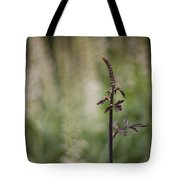 The Branch Tote Bag