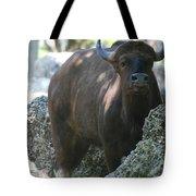 The Bull Moose Tote Bag
