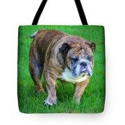 The Bulldog Shuffle Tote Bag