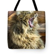 The Cat Who Loves To Sing Tote Bag