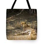 The Cheetah Wakes Up Tote Bag