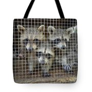 The Clan Tote Bag
