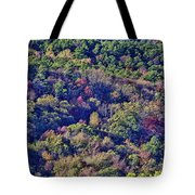 The Colors Of Autumn Tote Bag by Douglas Barnard