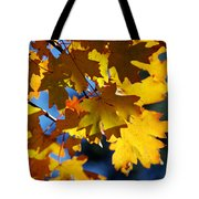 The Colors Of Autumn In Arizona  Tote Bag