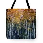 The Colors Of Fall II Tote Bag