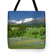 The Crazies Tote Bag