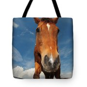The Curious Horse Tote Bag