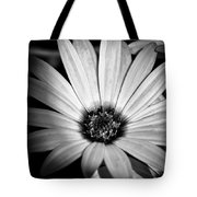 The Daisy II Tote Bag