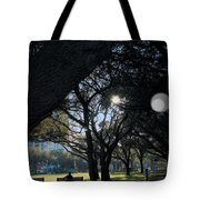 The Day's Reflection Limited Edition Bodecoarts Tote Bag