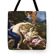 The Death Of Adonis Tote Bag by Il Baciccio