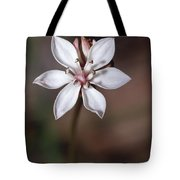 The Delicate Pastel Pink Flower Tote Bag