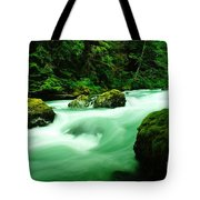 The Dosewallups River  Tote Bag