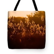 The Dunes- Fire Island Tote Bag