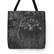 The Dusty Dew  Tote Bag