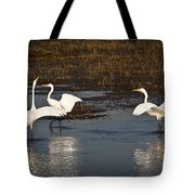 The Egrets Tote Bag
