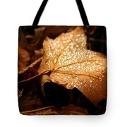 The Enlightened Maple Leaf Tote Bag by LeeAnn McLaneGoetz McLaneGoetzStudioLLCcom