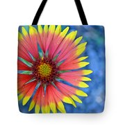 The Extrovert Tote Bag