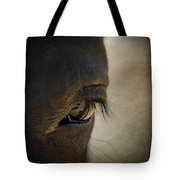 The Eyes Are The Window To The Soul Tote Bag