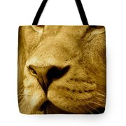 The Face Of God In Sepia Tones Tote Bag