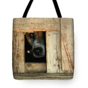 The Face Of Hoarding Tote Bag