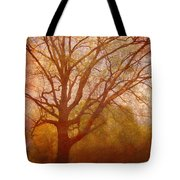 The Fairy Tree Tote Bag by Brett Pfister