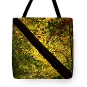 The Fall Split Tote Bag